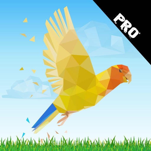 A Bird Flying In The Forest PRO