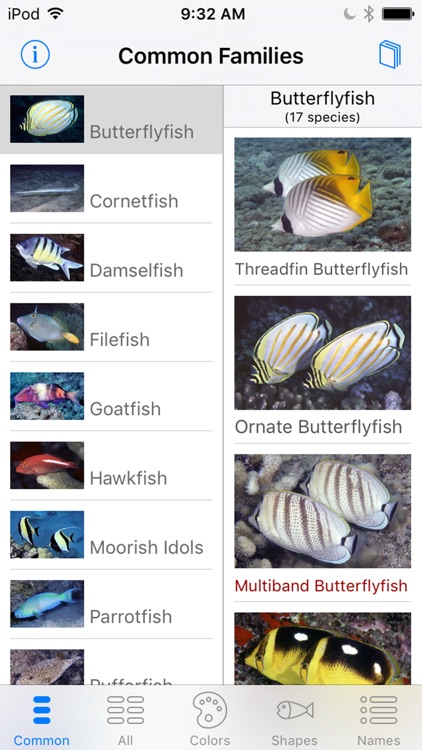 Snorkel Fish Hawaii for iPhone