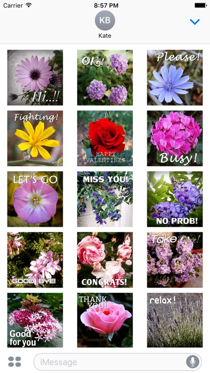 Flower Words - Text Message Stickers Pack 2