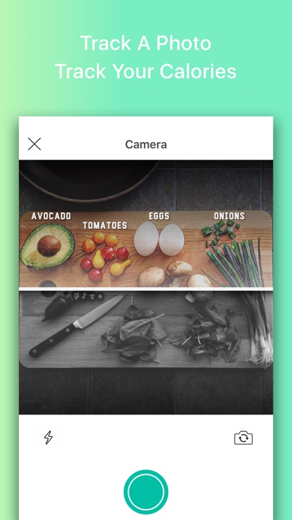 Macros: Weight Loss Nutritionist & Calorie Counter