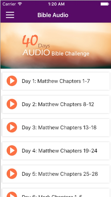 40 Days Bible Challenge screenshot-3