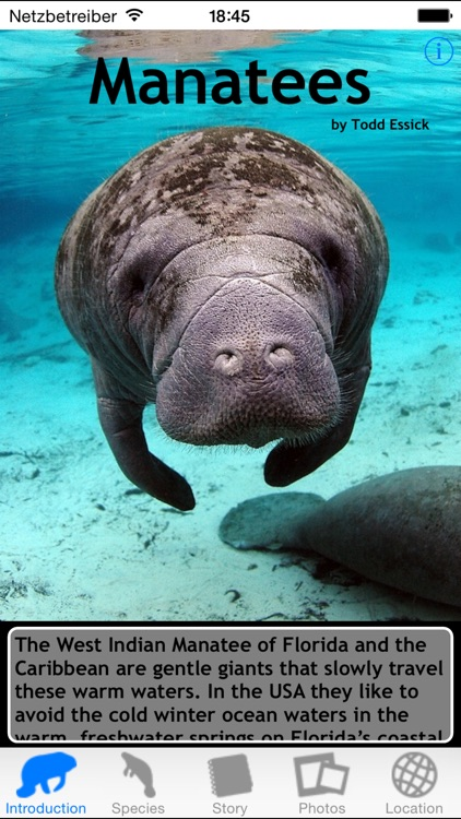 Manatees screenshot-0