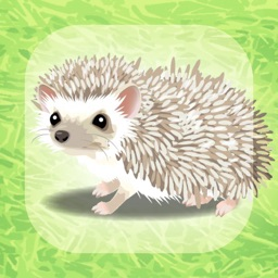 Virtual Therapeutic Hedgehog Pet