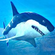 神奇鲨鱼 - 海洋动物园大鱼吃小鱼大作战