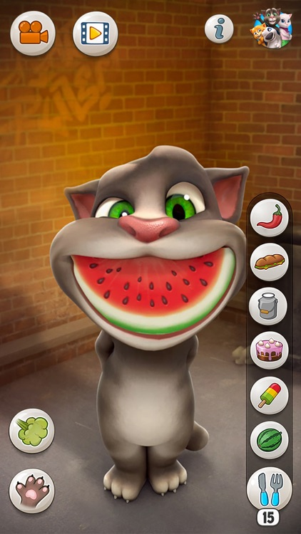 Talking Tom Cat screenshot-1