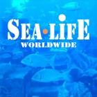 Sea Life worldwide icon