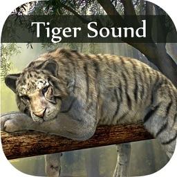 Tiger Sounds - Tiger Sounds for Kids