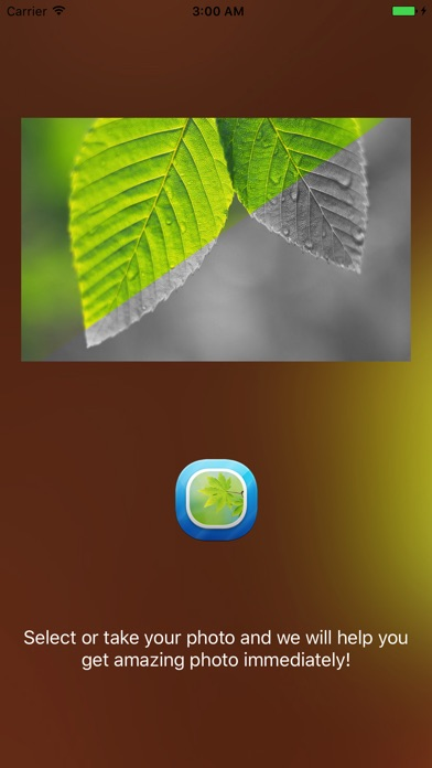 Screenshot #1 for Convert Color To Gray Unity kMT