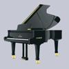 新版钢琴入门教学神器-弹钢琴学习必备的免费视频指导教程
