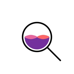 Snowloop - Search engine for camera roll pictures
