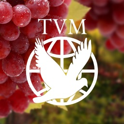 True Vine Ministries