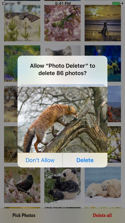 Photo Cleaner - Fast Delete