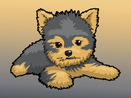 React with cute Yorkie Dog Stickers and Emojis Pack