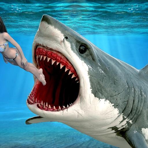 Wild Shark Games