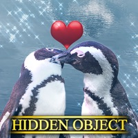 Codes for Hidden Object - Be Mine Hack