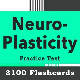 Neuroplasticity Practice Test 3100 Exam Quiz