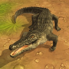 Activities of Crocodile Attack 3D