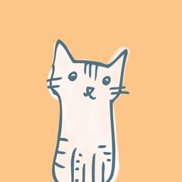 Chat Neko Cat