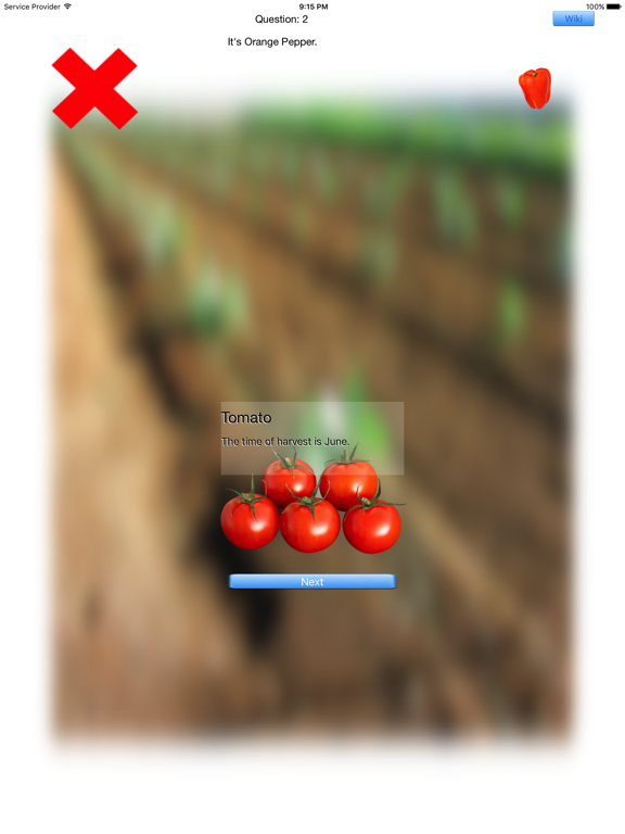 Vegetables Touch ~ simple trivia game ~ screenshot 9