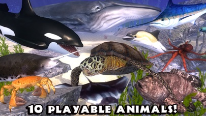 Ultimate Ocean Simulator screenshot 3