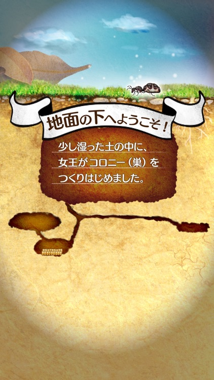 アリの巣コロニー - ほのぼの観察育成ゲーム screenshot-4