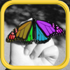 Color Editor - Photo Recolor & Background Eraser