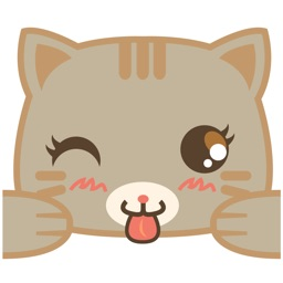 Bobo the cute brown cat for iMessage Sticker