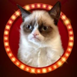 KittyGram - Cutest Cats Photo Decorator Free