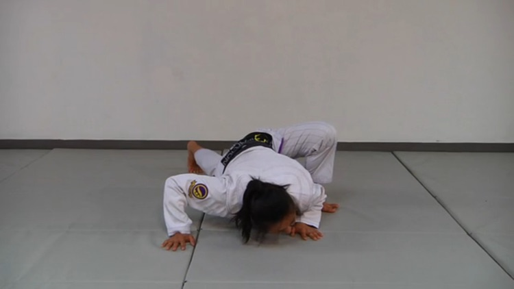 BJJ Gripfighting & Drills
