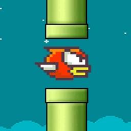 Smashy bird .