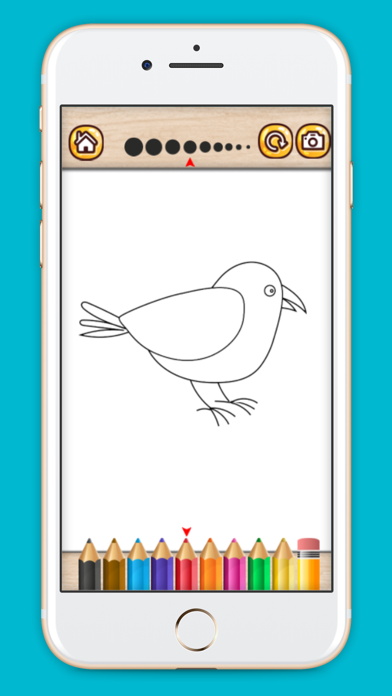 Bird coloring book drawing painting games for kids screenshot two