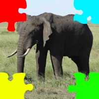 Codes for Elephants Jigsaw Puzzles with Photo Puzzle Maker Hack