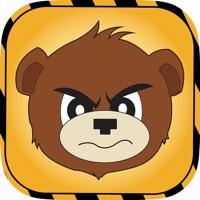 Codes for Bearly Safe Hack