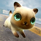我的神奇小猫 icon