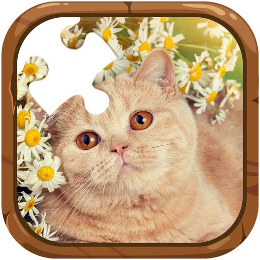 cats jigsaw puzzles game for kids