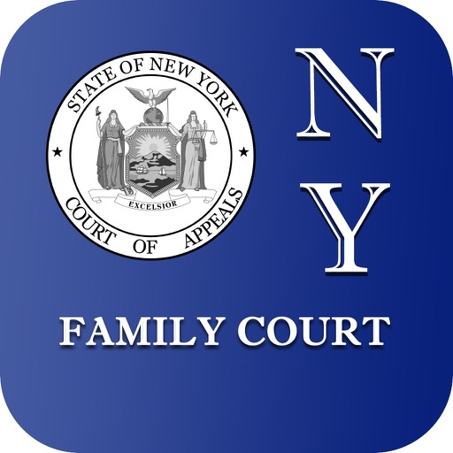 NY Family Court 2017