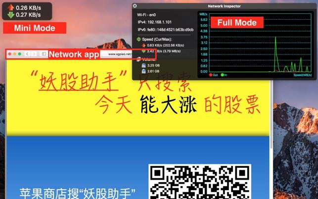 Network Inspector Screenshot