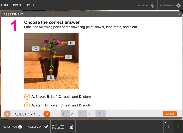 Functions of Roots screenshot-4