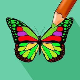 Butterfly Color - Coloring Book for Stress Relief
