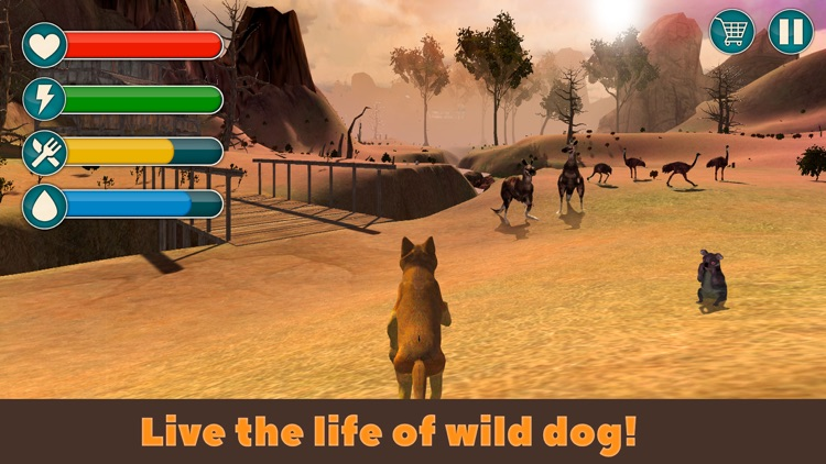 Dingo Dog Wild Life Simulator 3D