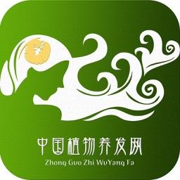 中国植物养发网