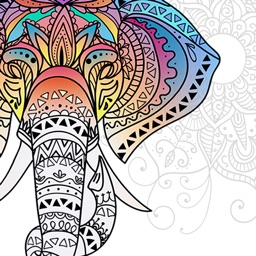 Mandala Coloring Book Color Therapy For Adults
