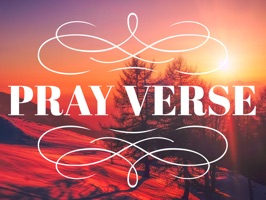 Pray-Verse Stickers