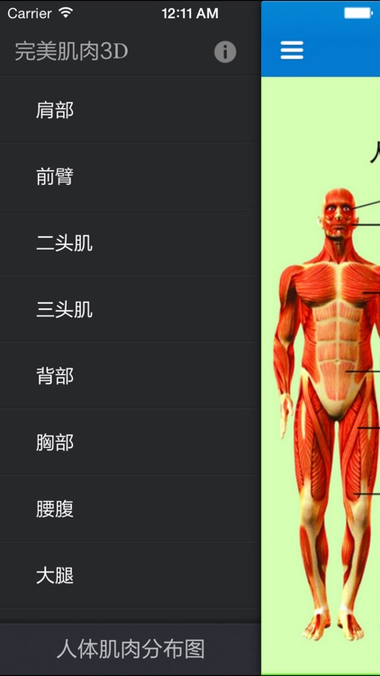 The perfect muscle exercise guide 3D