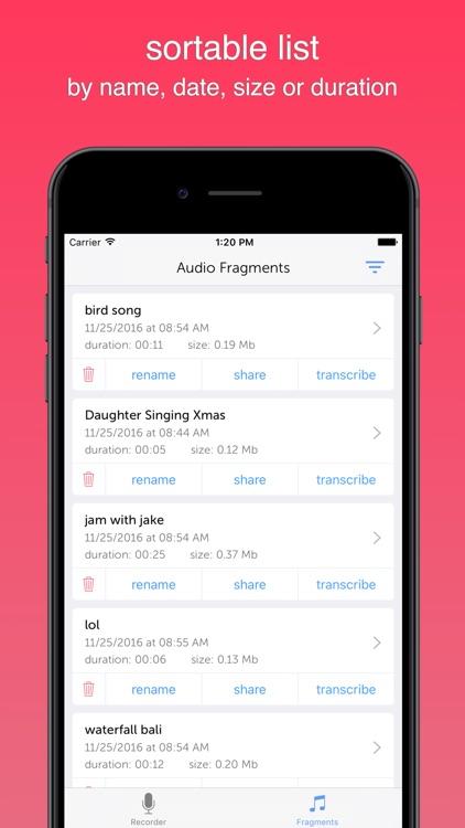 Instant Rec Lite: Audio Recorder & Voice Recording screenshot-3