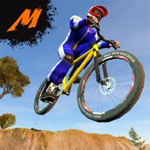 Mayhem Mountain Bike Downhill BMX Racing 2017