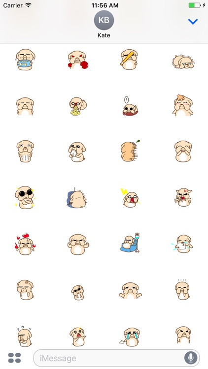 Animated Stupid Dog Stickers For iMessage