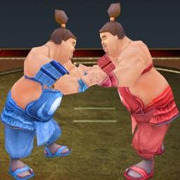 Sumotori Wrestle Dreams 3D