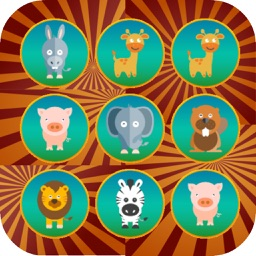 Animals Matching Card - Puzzle for Fun