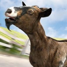 Activities of True Goat Skater Simulator 2017 Evolution Game